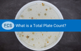 What is a Total Plate Count?
