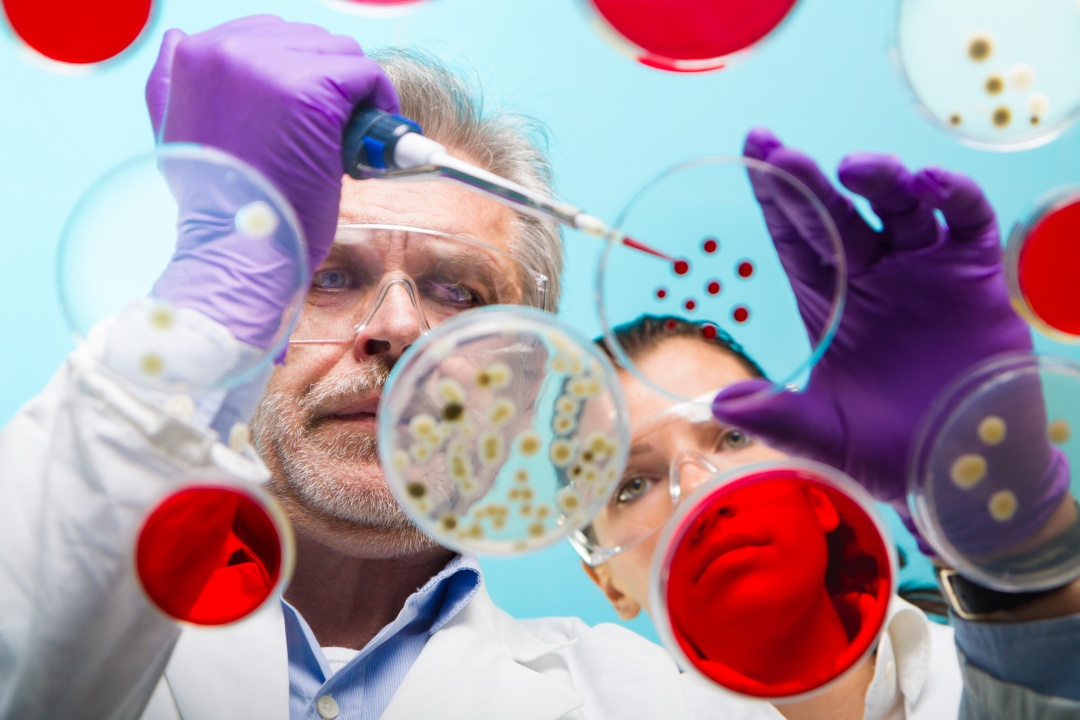 positive result microbiology