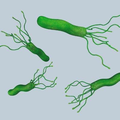 Bacillus cereus What you should know!