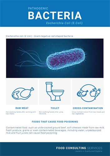 what are E.coli bacteria? poster